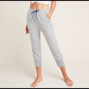 Free People Counterpunch Cropped Jogger Small
